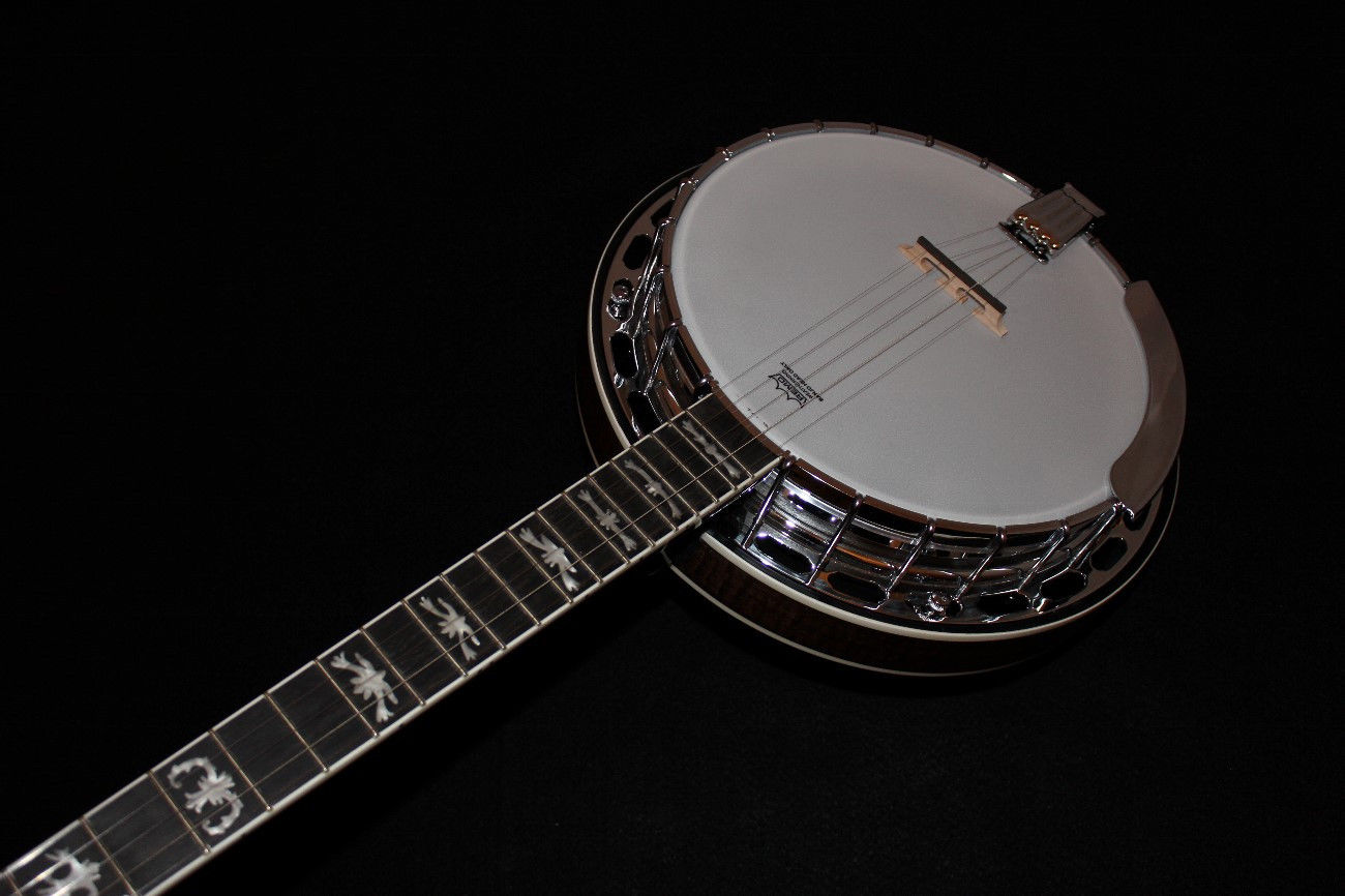 fender fb58 5 string resonator banjo w gigbag 717669040154 ebay. Black Bedroom Furniture Sets. Home Design Ideas