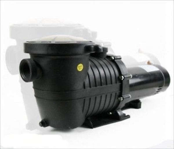 Replacement 1 5 1 1 2 hp swimming pool pump motor w - Strainer basket for swimming pool ...