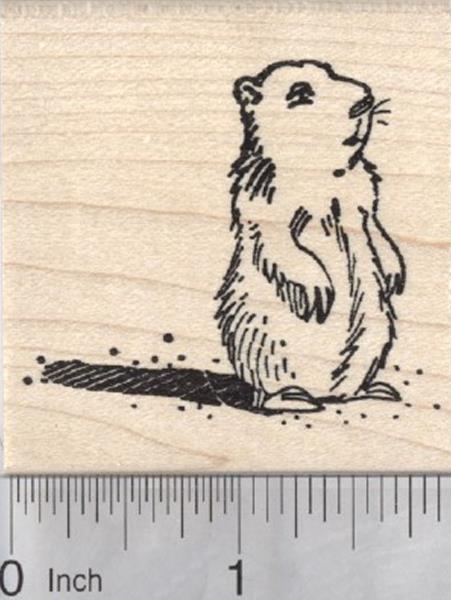 Marmot with Shadow H29403 WM Groundhog Day Rubber Stamp