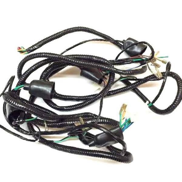 Details about TrailMaster 150 XRX Main Wiring Harness