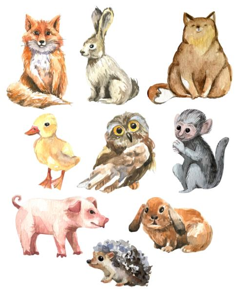 Watercolour Animals Forest Animals Nursery Wall Stickers ...