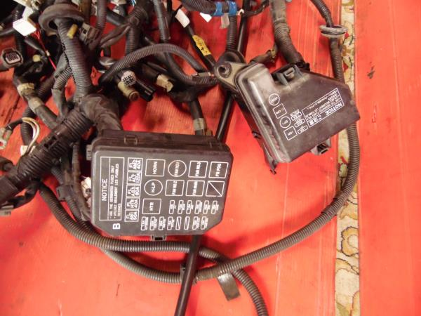 1991 Mr2 Wiring Harness - Wiring Diagram 500  Sgte Wiring Harness on suspension harness, obd0 to obd1 conversion harness, fall protection harness, dog harness, oxygen sensor extension harness, pony harness, safety harness, maxi-seal harness, amp bypass harness, engine harness, alpine stereo harness, cable harness, electrical harness, pet harness, battery harness, nakamichi harness, radio harness,