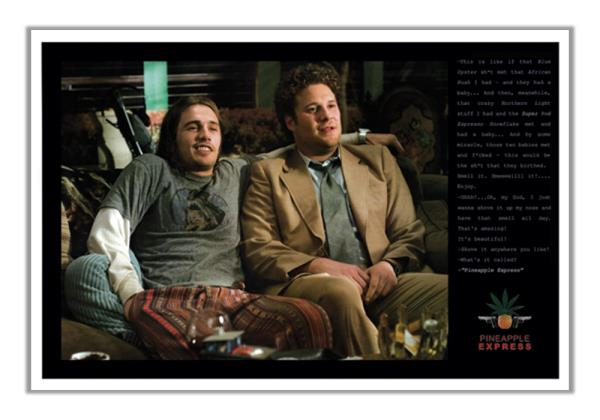 Details about Pineapple Express with Funny Quote 24x36 Movie Poster James  Franco Seth Rogen
