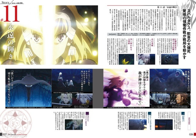 Details about DHL/EMS Fate/Apocrypha Anime Visual Guide Japan Official  Animation Art Work Book