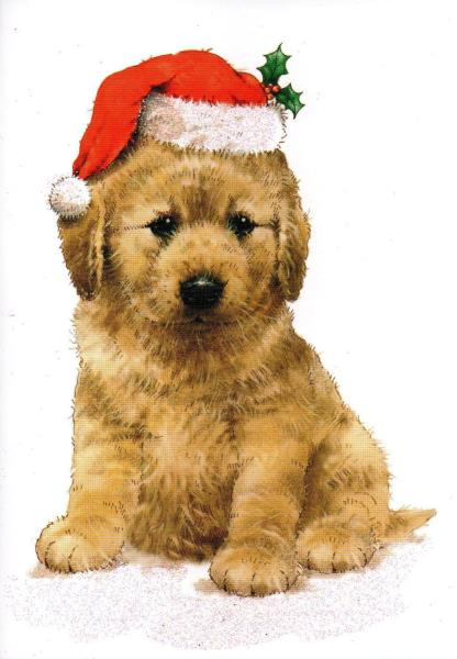 Dog Lovers Cute Golden Retriever Pup In Santa Hat Sparkly