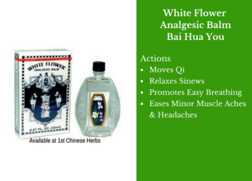 Flower shop near me white flower analgesic balm flower shop white flower analgesic balm the flowers are very beautiful here we provide a collections of various pictures of beautiful flowers charming mightylinksfo