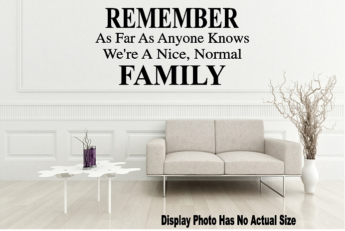 wall quote vinyl decal remember as far as anyone knows we're nice